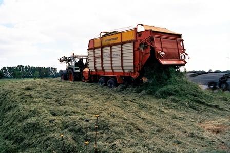 zweite grasernte landwirtschaft